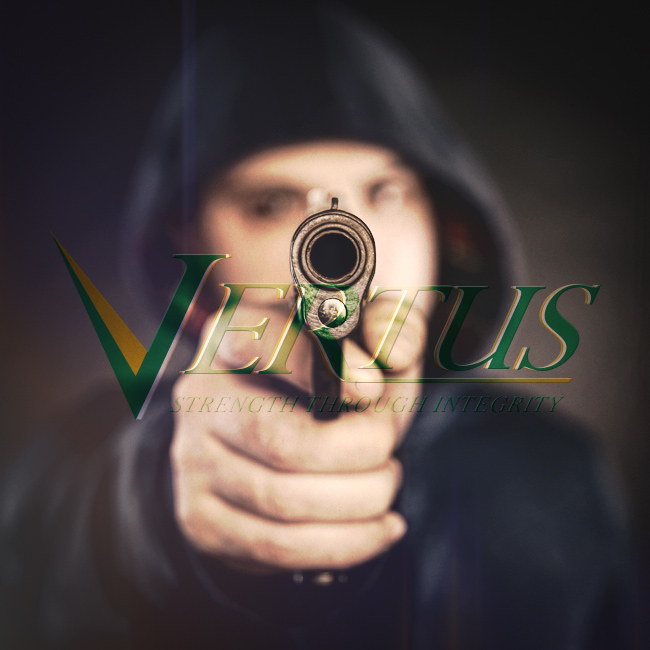 vertus-inc-images-square-active-shooter-training-seer-school